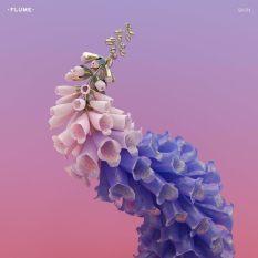 flume art.jpg