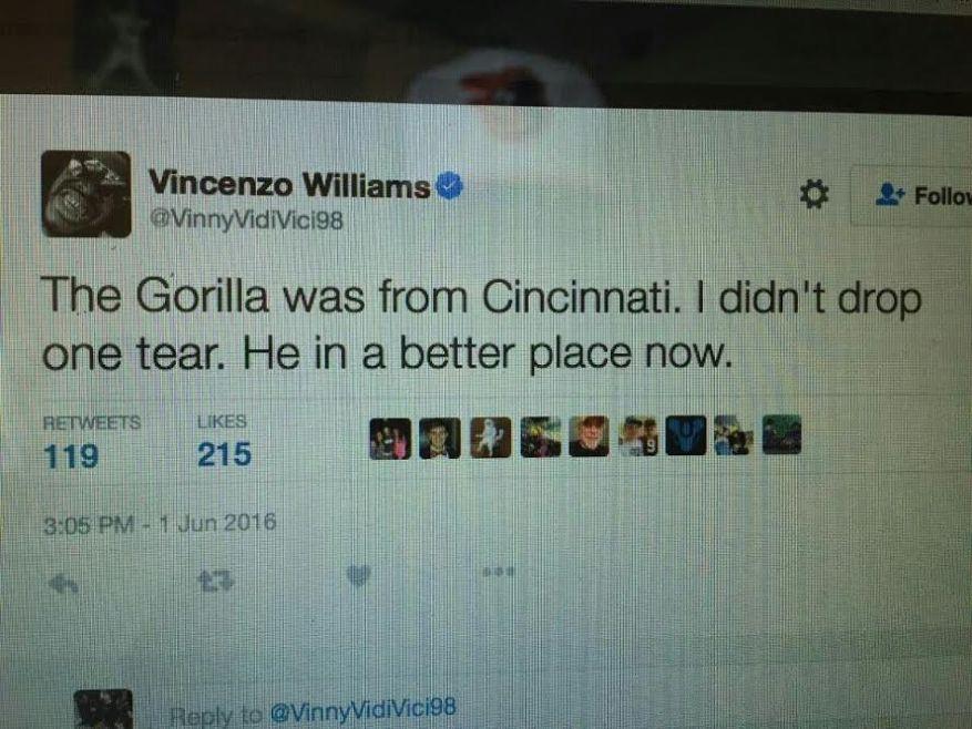 vince gorilla tweet